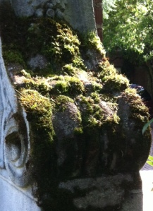 stone_moss texture