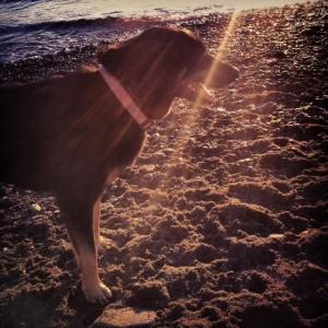 mia at beach
