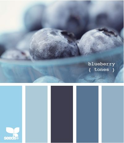 blueberry tones.jpg